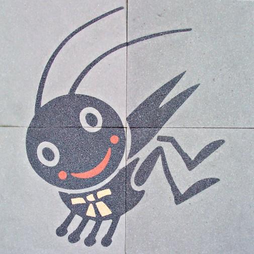 正新國小蟋蟀
